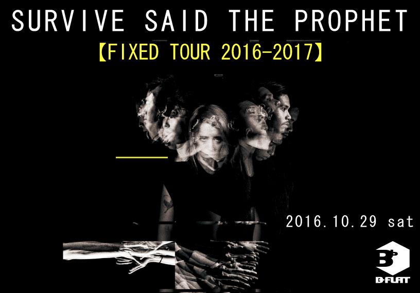 FIXED TOUR 2016-2017